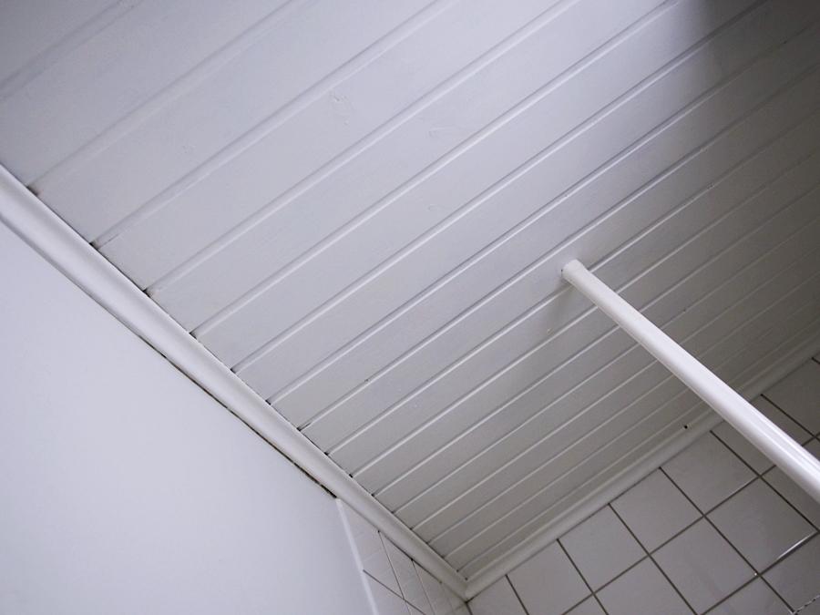 Kylpyhuoneen katto maalaus